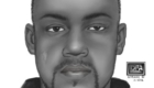 IDFA composite 2012. Mountlake Terrace WA. Rape suspect.