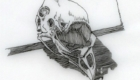 Pen and ink bantam chicken skull.