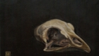 Oil painting of a bantam chicken skull. Private collection.